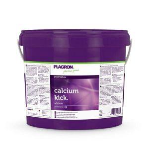 calcium kick large